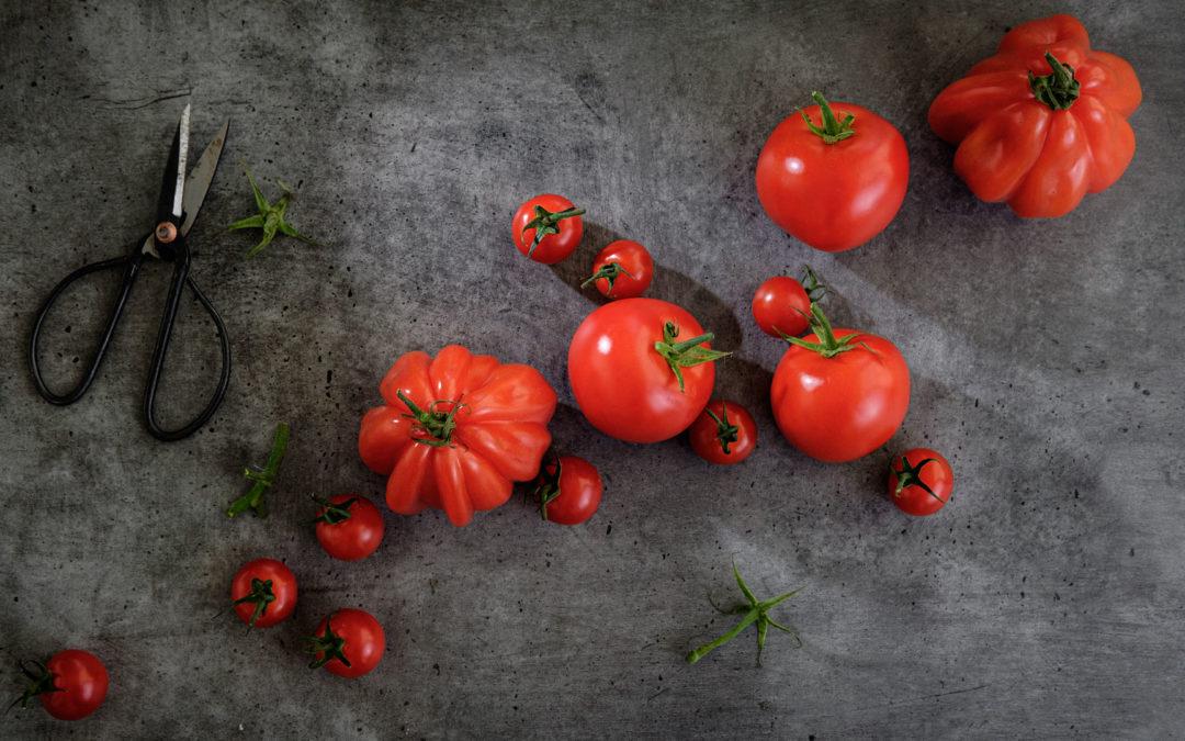 Tomaten – eine kleine Warenkunde